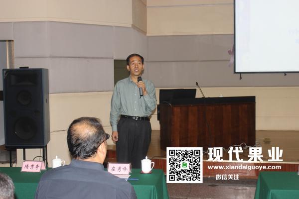 苹果良种烟富8开发推广研讨会在烟台召开